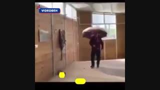 طنز از این چتر ها برداشته کرونا نگیره