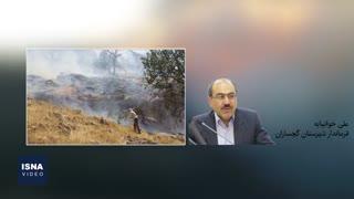 تداوم آتشسوزی در جنگلهای گچساران
