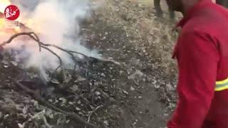 آتش سوزی در جنگلهای کاکاشرف خرمآباد